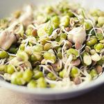 Raw Food Cuisine: Segreti di Cucina e Alimentazione Utili al Ristoratore