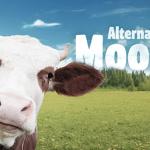 Carne Vegetale New Trend: Sbanca in Borsa e Sbarca in Italia