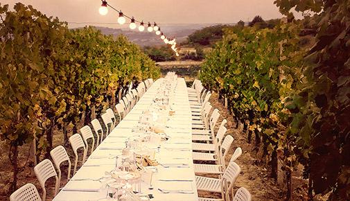 Turismo del Vino in Roero - Luna e Ciabot