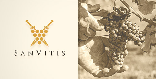 SanVitis: Comunicare Vino e Cantine in Tempo di Crisi